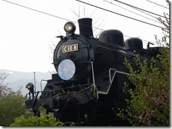 DSCN0889